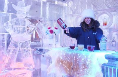 Minus 5 Ice Bar - image 1