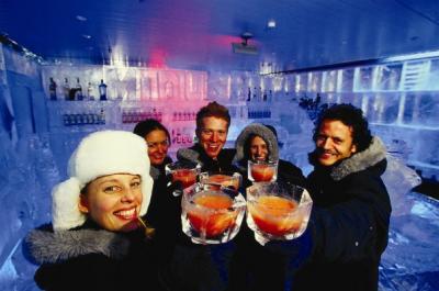 Minus 5 Ice Bar - image 2