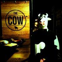 Kaukapakapa Hotel (The Cow) - image 3