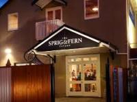 Sprig & Fern Motueka