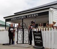 The Sprig & Fern Tavern - image 1